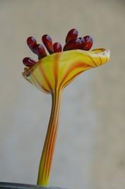 Fleur_souffle_2_cadre_w